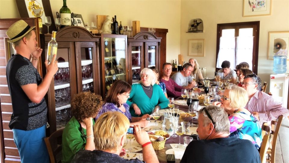 Wine tours from Bled