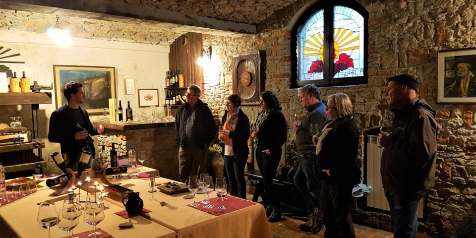 Wine tasting in the Vipava Valley
