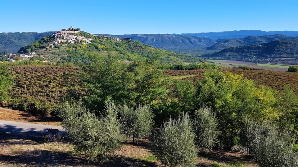 Motovun and the Istrian hills
