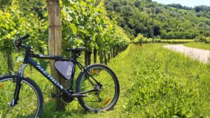 Best cycling tour in Slovenia